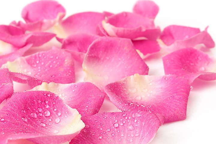rose-petal-oli