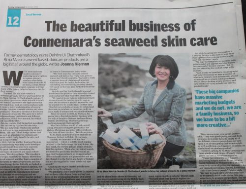 Sunday Independent Business